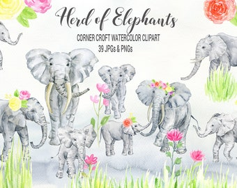Elephant clipart, watercolor elephants, herds of elephants, elephant printable, elephant family clip art