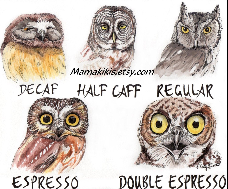 Coffee shop owl fine art print illustration caffeine art work