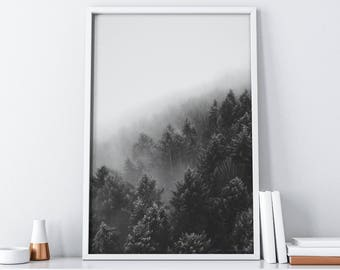 Forest Photography Downloadable Print| Rustic Home Decor| Farmhouse Decor| Scandinavian Minimalist Black and White Art Poster Digital Print