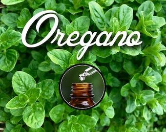 Pure Oregano Essential Oil for Diffuser, 10ml Euro Dropper Bottle