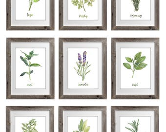 Herb Collection prints Set of 9, Green Herb Watercolor Painting, Sage Rosemary Parsley Lavender Basil Mint, Herbal Home Garden Wall Decor