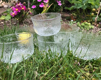 Six wonderful Nuutajarvi Oiva Toikka design for Iittala Fauna glass dessert bowls-Finland