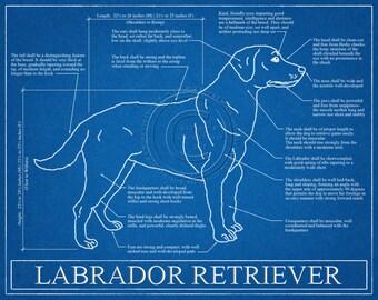 Labrador Retriever Blueprint Elevation / Labrador Retriever Art / Labrador Retriever Wall Art / Labrador Retriever Gift