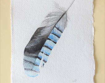 Original watercolour illustration painting of a European jay feather
