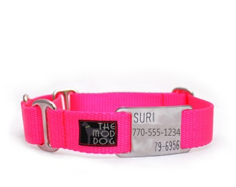 """3/4"""" The Swan buckle or martingale dog collar with flat ID tag"""