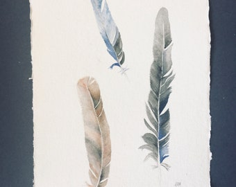 Feathers painting, Australian birds, original art, handmade paper, watercolour painting