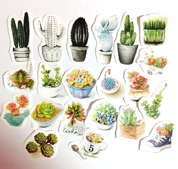 21 pcs cacti sticker desert sticker flakes succulent bullet journal stickers cactus watercolor stickers potted plants stickersgardening