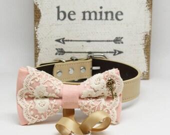 Blush Lace dog bow tie collar,Dog Ring Bearer collar, Charm (Key to my Heart), Proposal, Pet wedding accessory, lace wedding, handamde