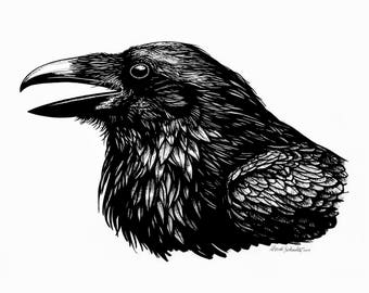 Raven pen and ink