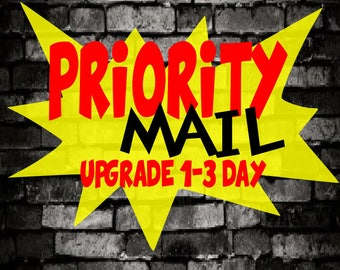 Upgrade your standard mail selection to Priority Mail 1-3 day transit time once it leaves the shop