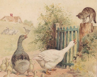 Geese with Goslings Geese Family Sending Cat Away Farm Animals Antique Lithograph 1892