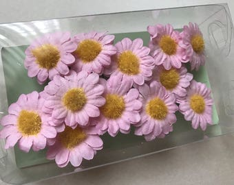 Set of 12 flower d 2 cm Daisy pink