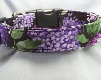 Lilac Flowers on Black Dog Collar