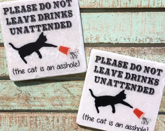 Funny Cat Coasters, Set of 2, Housewarming Gift, Funny Quotes, Crazy Cat Lady, Party Decor, Kitten, Cat, Party Favors, Birthday Gift