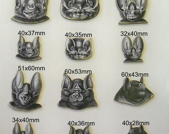 BATS HEADS with a Smile