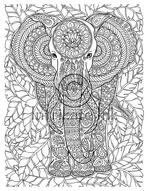 Elephant Coloring Page Animal Coloring Wild Detailed and