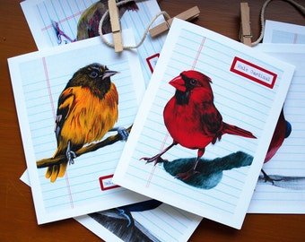 Set of 6 Illustrated Bird Cards - Note Cards - The Beautiful Bird Collection - Card Set - Bird Nerd