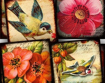 Vintage Flora and Fauna Digital Collage Sheet in 7/8 Inch Squares Birds Flowers Victorian Nature for Glass Tiles and More piddix 727
