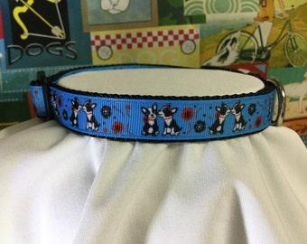 CLEARANCE SALE! Boston terrier dog collar