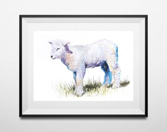 Fine Art Print of My Original Lamb Watercolor Painting Signed A3 A4 New Giclee High Quality Vibrant Impressionist Wildlife Animal Cute