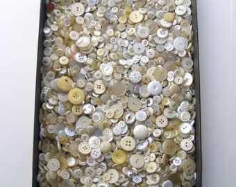 Huge lot of 800 white cream butter Snow transparent buttons, sewing destash, notions supplies, big lot of craft buttons