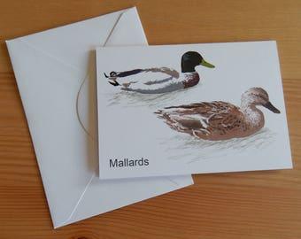 Mallards Card