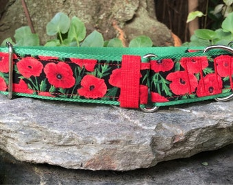 Poppies martingale collar