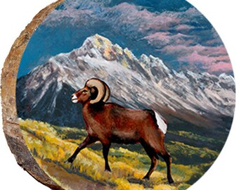 Ram in the Grass - DAR025