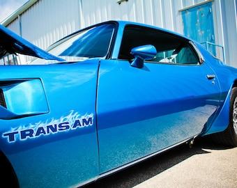 1978 Pontiac Firebird Trans Am Car Photography, Automotive, Auto Dealer, Muscle, Sports Car, Mechanic, Boys Room, Garage, Dealership Art