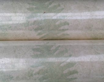Vintage Osborne & Little 3 Rolls Botanical Fern Wallpaper W1934-01 Discontinued