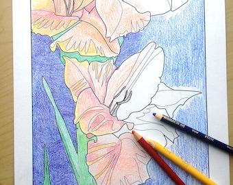 flower coloring page, adult coloring sheet, gladiolus flowers, printable art, digital download