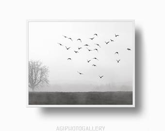Morning Mist, Flying Birds, Foggy Field, Foggy Tree, Minimalist Landscape, Misty foggy Morning, Black and White  Print,