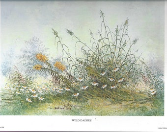 1978 Burton Dye Wild Daisies Limited Edition Signed Print, Pretty Daisies and Goldenrod, ~~by Victorian Wardrobe