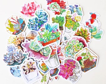 Succulent Stickers/ Cactus Stickers/filofax stickers/planner stickers/Watercolor stickers/erin condren/TS005