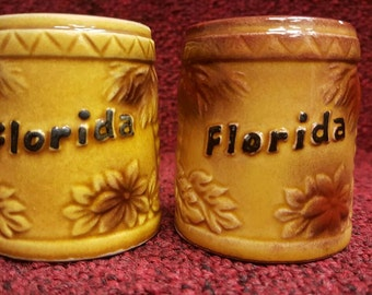Vintage 1960s salt and pepper shakers from sunny Florida!