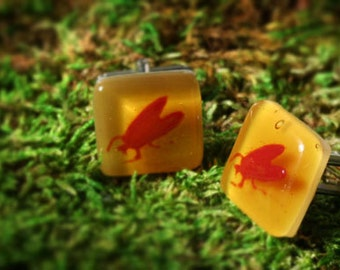 SALE Beetle Bug Cufflinks in Scarlet on Amber - Fused Glass Cuff Links by Happy Owl Glassworks - Gift for Him Fathers Day or Valentines Day