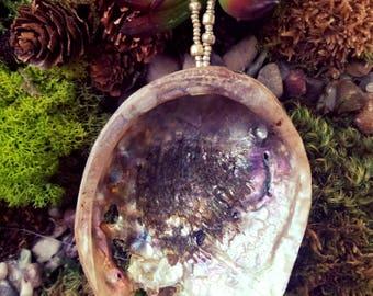 Abalone Ornament