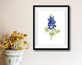 art print Bluebonnet, Blue bonnet watercolor print,  wild flower art, Texas state flower, botanical watercolor, blue bloom, flowers artwork