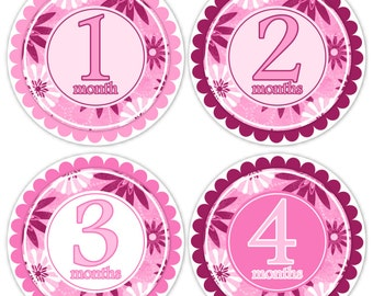 Instant Download - Baby Month to Month Stickers, Monthly Birthday Stickers for Baby, Photo Prop Birthday Stickers, Pink Flowers