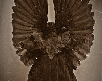 Crow angel death doll horror creepy scary doll. Free shipping