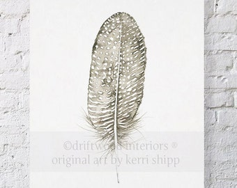 Feather Print 'Spotted Dove' 11x14 - Feather Art Print - Feather Wall Art - Wall Art Home Decor