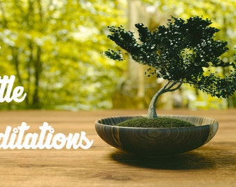 Guided Meditation: The Little Meditations