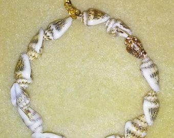 genuine seashell hoop earrings
