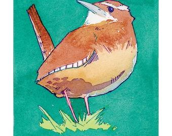 State Birds - Great Carolina Wren