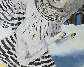 Barred Owl Landing in a Snowy Winter Landscape--Greeting Card--Original Wildlife Art (UP1)