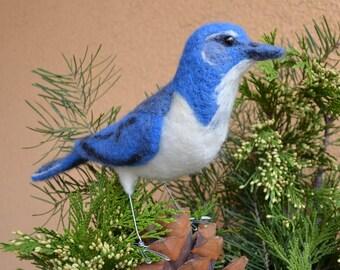 Mr Western Scrub Jay, Nadel gefilzt Vogelskulptur