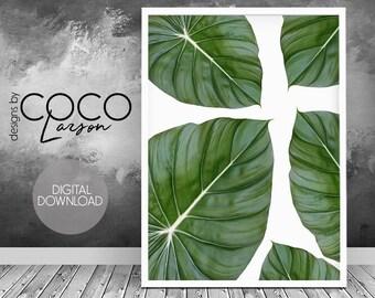 Plant wall art, plant green print, green photography, plant print, large nature photo, minimalist wall art, living room art, green home art