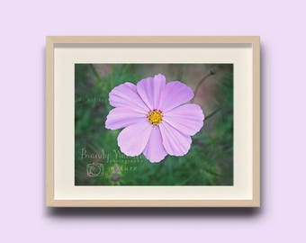 Wildflower photo, wildflower wall art, flower decor, purple flower, purple wall art, purple decor, baby girl nursery, nursery wall art, girl