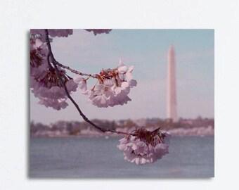 Cherry blossom art canvas photography, japanese sakura tree branch large wall art, Washington DC art, floral gallery wrap, pink blue decor