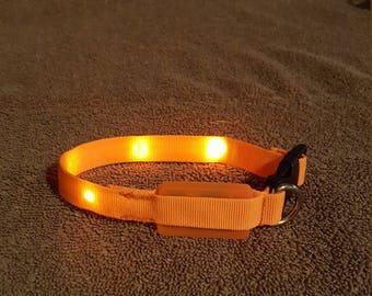 Blinking dog collar